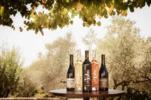 Photo 6 - coffret - bouteilles vins biologiques - blanc rouge rosé - Domaine Saint Jean de l'Arbousier Montpellier
