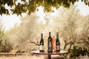 Photo 4 - coffret - bouteilles vins biologiques - blanc rouge rosé - Domaine Saint Jean de l'Arbousier Montpellier