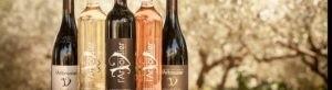 Photo bandeau - coffret - bouteilles vins biologiques - blanc rouge rosé - Domaine Saint Jean de l'Arbousier Montpellier