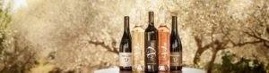 Photo header panier - coffret - bouteilles vin biologique - Domaine Saint Jean de l'Arbousier