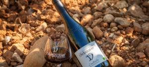 Photo 6 - Composition Vin bouteille verre - Terroir - L'Inattendu - Domaine Saint Jean de l'Arbousier