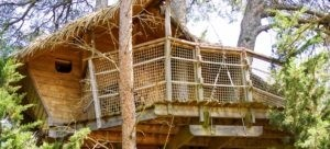 Photo - Oenotourisme - cabane dans les arbres - Tourterelle - Domaine de l'Arbousier - Montpellier Hérault Tourisme