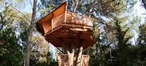 Photo - Oenotourisme - cabane dans les arbres - Tourterrelle - nature - Domaine de l'Arbousier