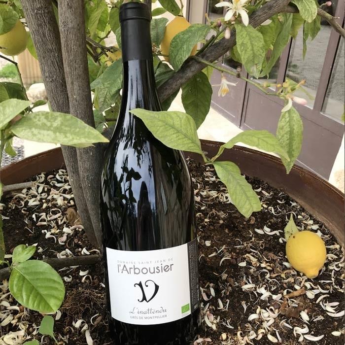 Photo - bouteille de vin - rouge - l'Inattendu - Grès de Montpellier - Magnum - citronnier